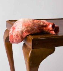 Cardio (detail), 2011, (Photograph by James Field, courtesy of ACSA)