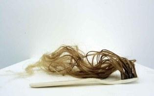 'Hairy Toothbrush', 2010