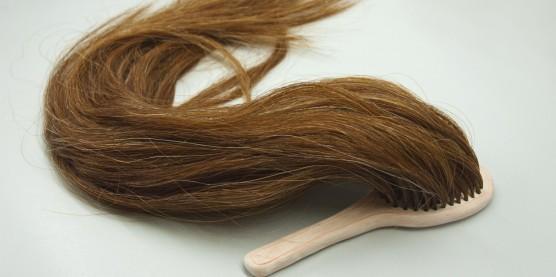 cropped-hairbrush2.jpg